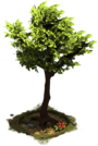 D_SS_StoneAge_Tree-8685d7fc5.png